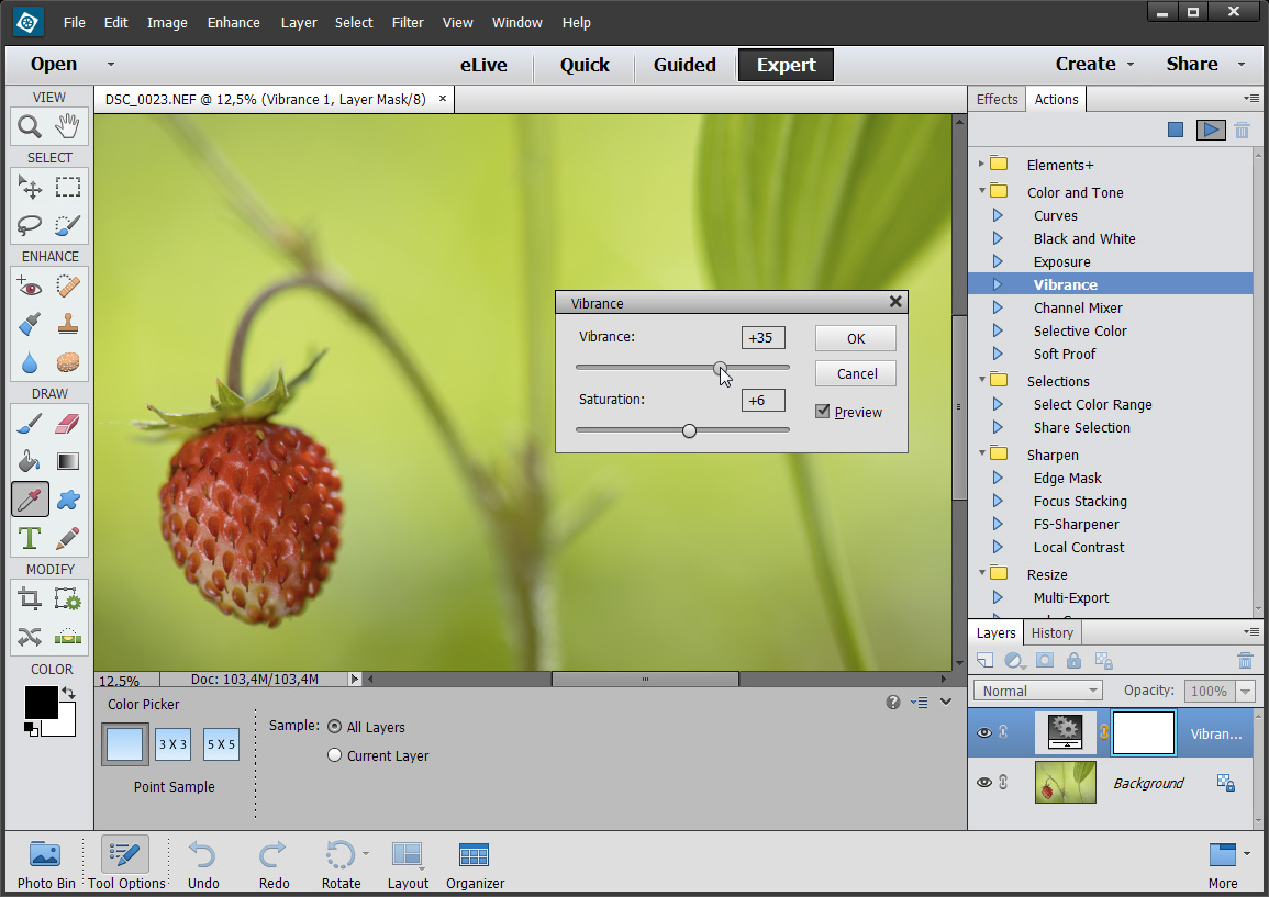 This patch reveals undocumented functions in Adobe Photoshop Elements 15. Users access the unlocked functions through special dialog boxes.